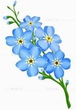 """Оригинал схемы вышивки  """"Незабудки """".  Незабудки, незабудки, незабудка, цветы, полевые цветы, цветочки, лепестки."""
